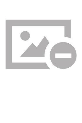 Coronel Otacílio Rodrigues da Silva: uma vida, muitas histórias - Em meio à colonização da região noroeste do RS, Octacílio e sua família vivem ciclos conturbados de revoluções e guerra - Endres, João Tarcisio